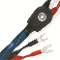 Oasis 7 Speaker Cable BIWIRED